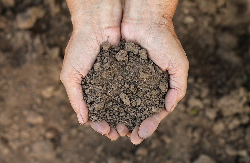 Les types de sols sont nombreux, nos techniques d'enterrage sont adaptées